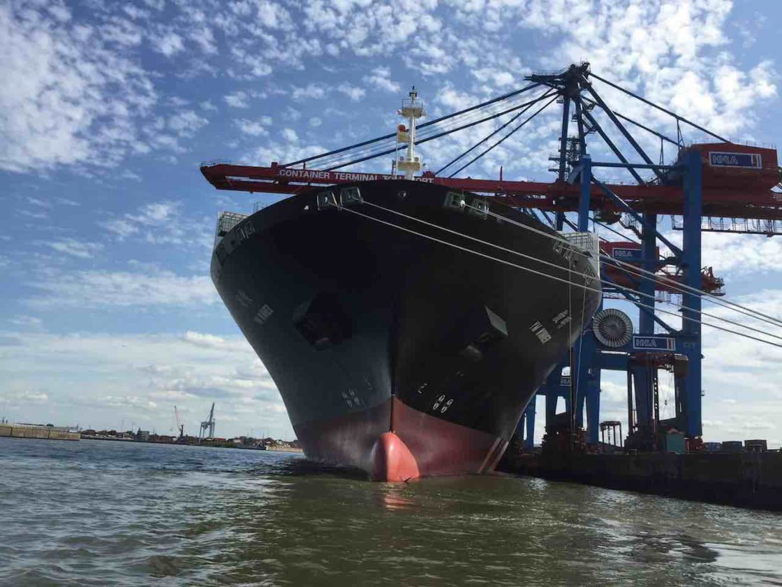 Hamburg Sehenswürdigkeiten: Schiff unter Containerbrücke am Containerterminal Tollerort